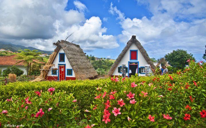Madeira, coaste abrupte invelite in flori salbatice