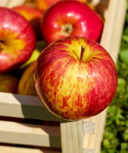 Un măr pe zi păstrează bolile la distanta