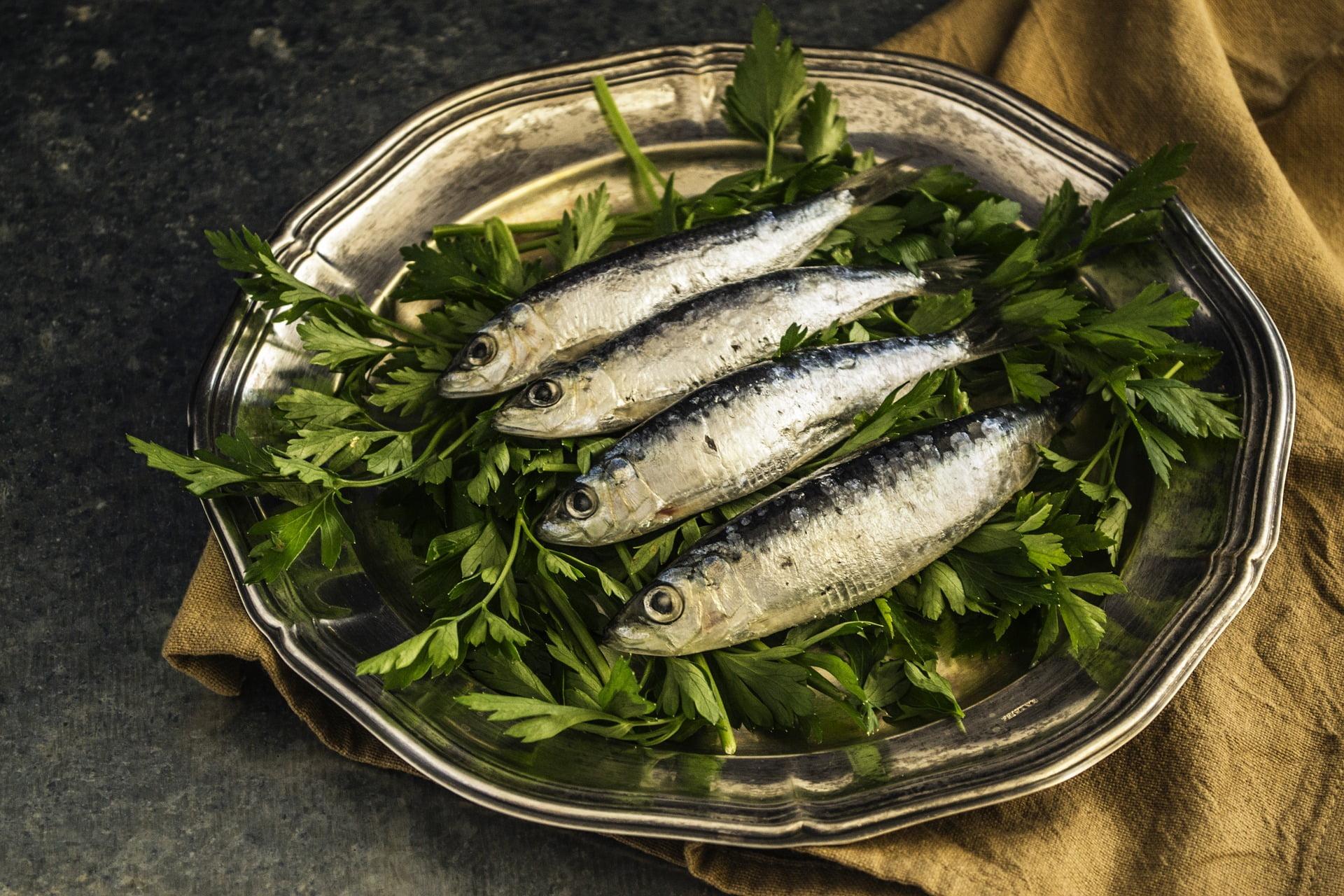 consumul de pește în sarcină