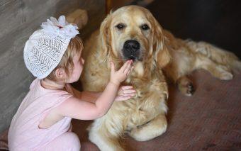 Animale de companie: 6 motive pentru a crește copiii alături de un câine sau de o pisică