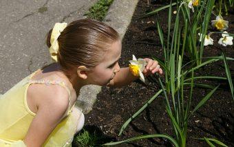 copil sensibil la mirosuri