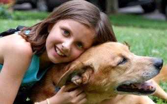 alergia copiilor la câini