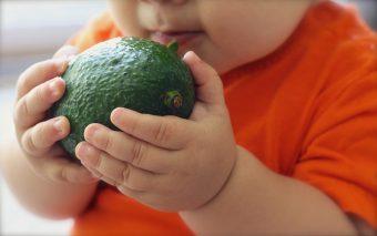 Rețete cu avocado pentru copii