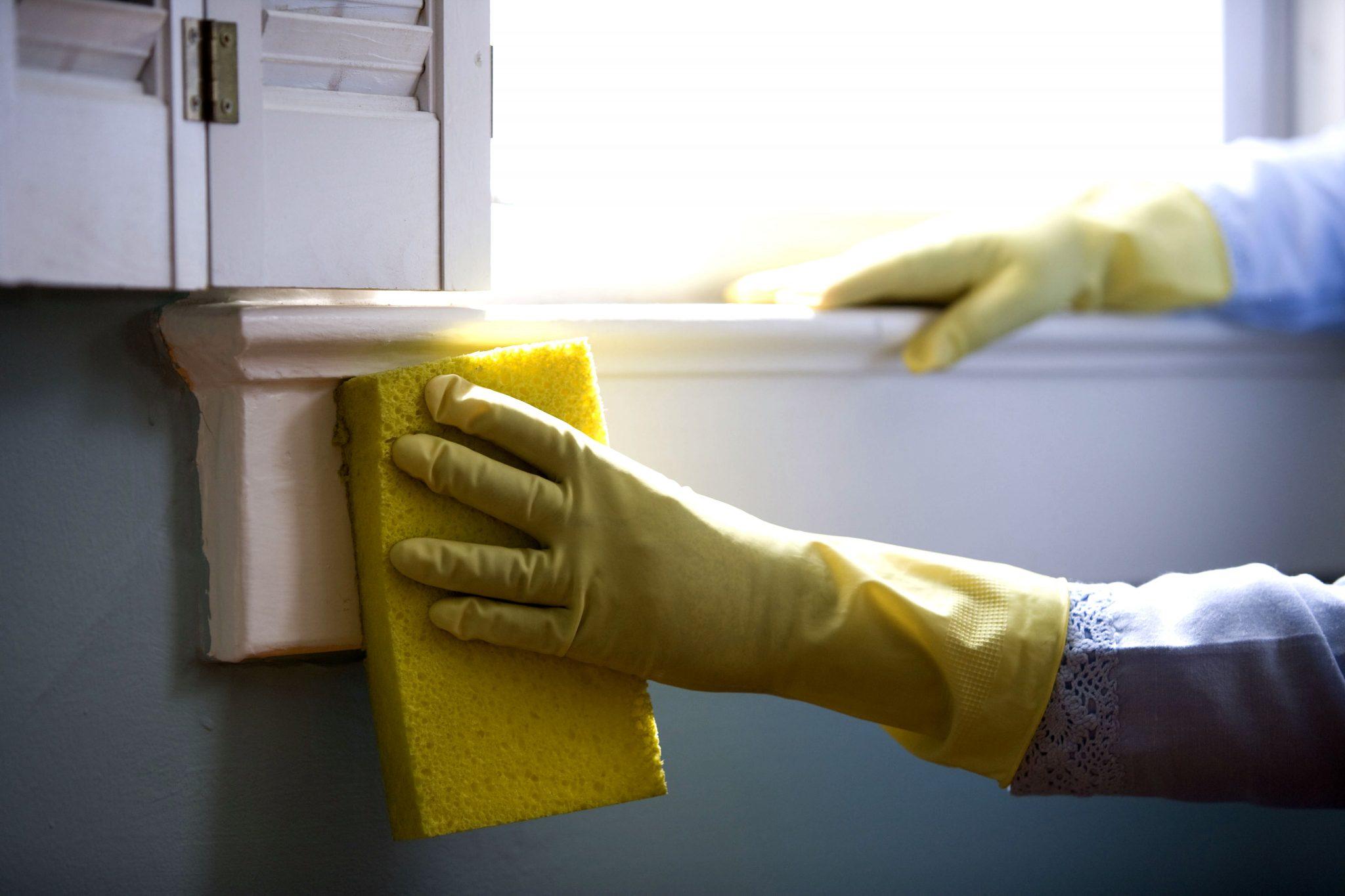 Curățenie cu produse naturale