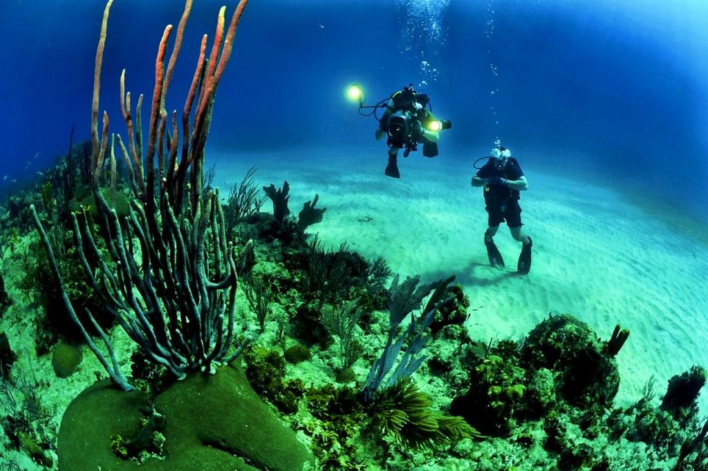 """Spune """"da"""" pe fundul mării!"""