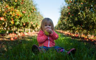 cum convingi copilul să mănânce fructe și legume
