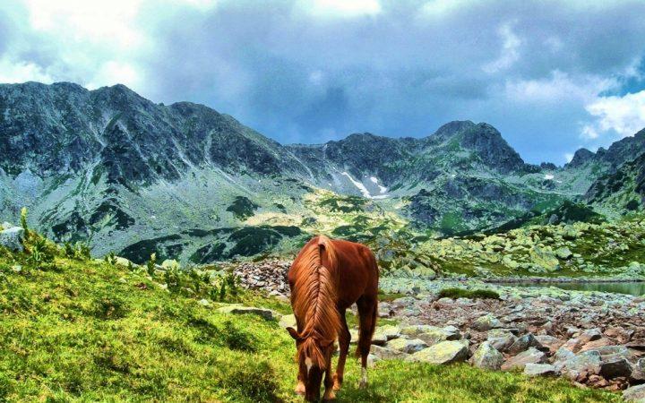 Cele mai spectaculoase Parcuri Naționale dedicate iubitorilor de natură. Parcul Național Retezat, România