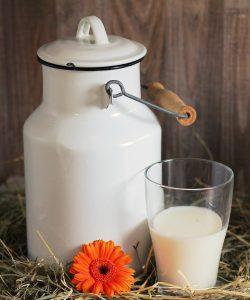 Când poți să-i dai lapte de vacă bebelușului?