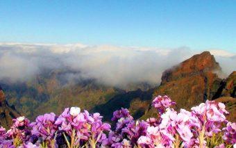 Madeira cea exotică. De ce să evadezi în luna august pe Insula Eternei Primăveri