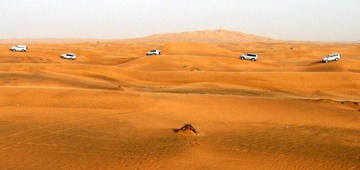Dubai - safari