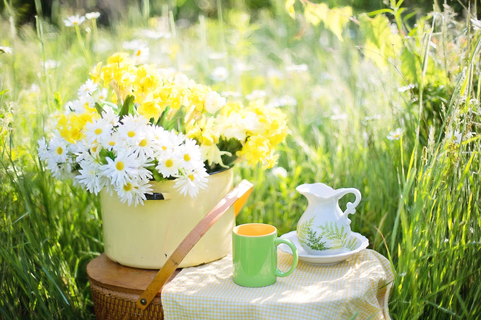 Ceaiuri pentru fertilitate  Ce ceaiuri stimulează fertilitatea?
