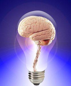 Vitamine pentru dezvoltarea creierului