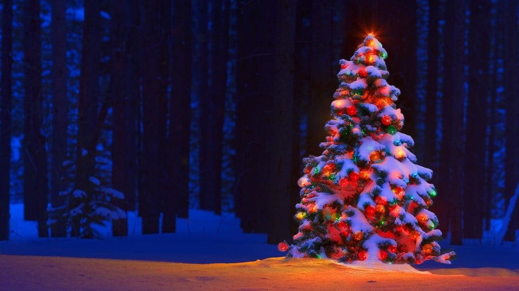 Crăciun alb pe meleaguri de poveste!