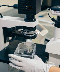 Terapia cu celule stem tratează azi cu succes peste 80 de boli diferite. Află de ce este importantă recoltarea de celule stem la naștere.