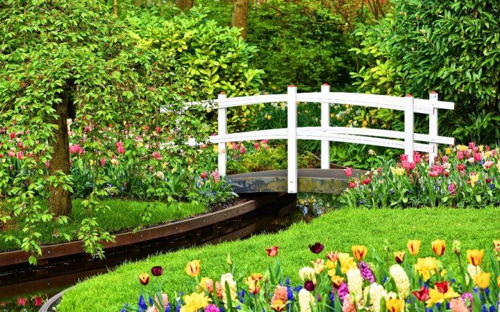 """Flower Power"" în Grădina Keukenhof"
