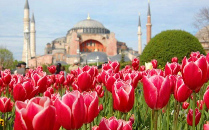 Festivalul Lalelelor în Istanbul