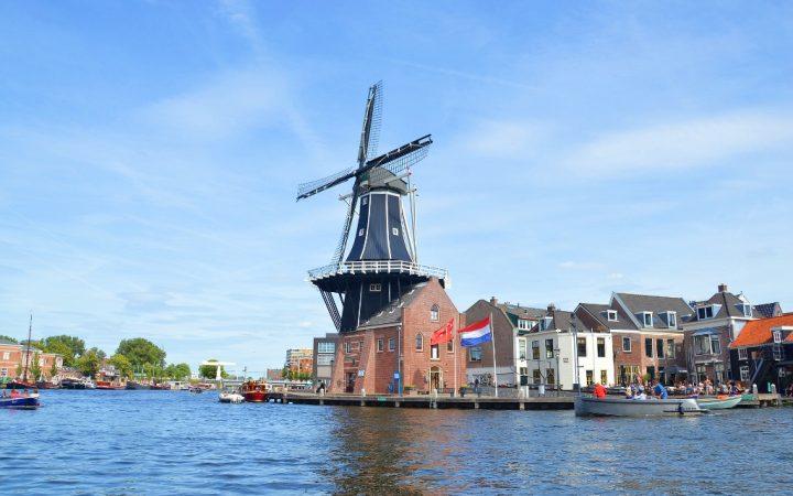 Orașul Florilor, Haarlem