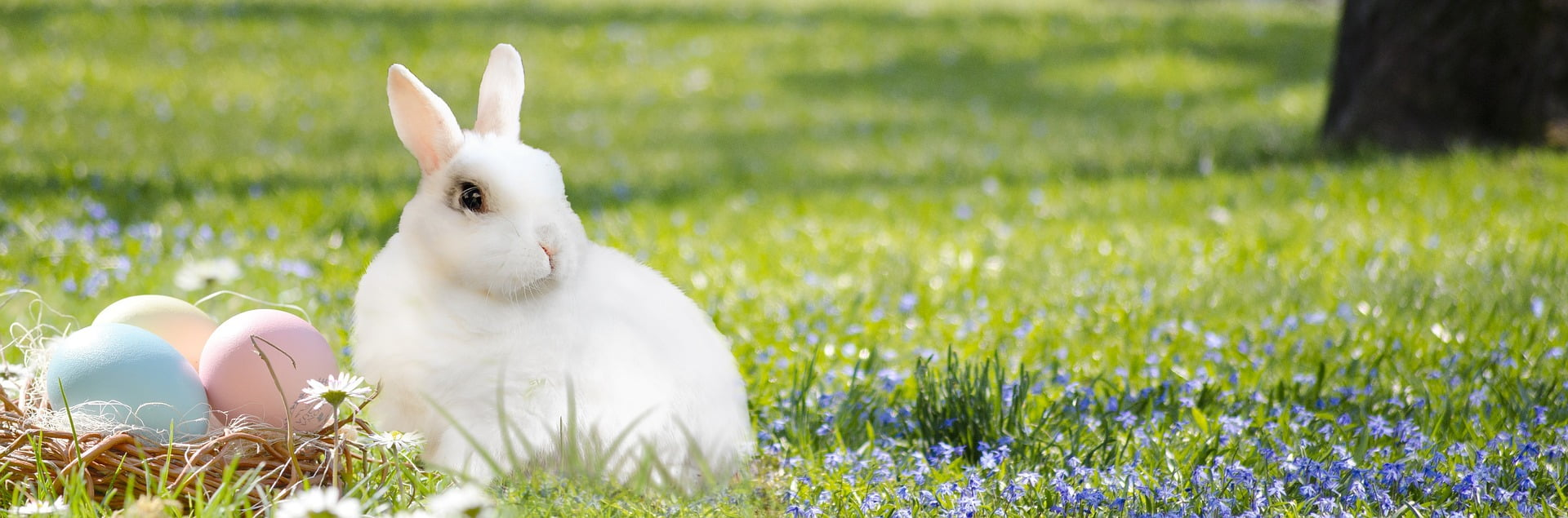Sărbătorile pascale. 7 locuri mitice unde să mergi de Paște.