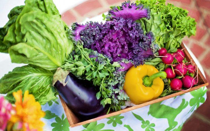 Se vorbește mai mult despre beneficiile unui astfel de stil de viață și mai puțin despre riscurile dietei vegetariene.