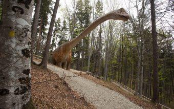 Dino Parc Râșnov și-a dublat suprafața și a reprodus cel mai mare dinozaur descoperit până acum în l...