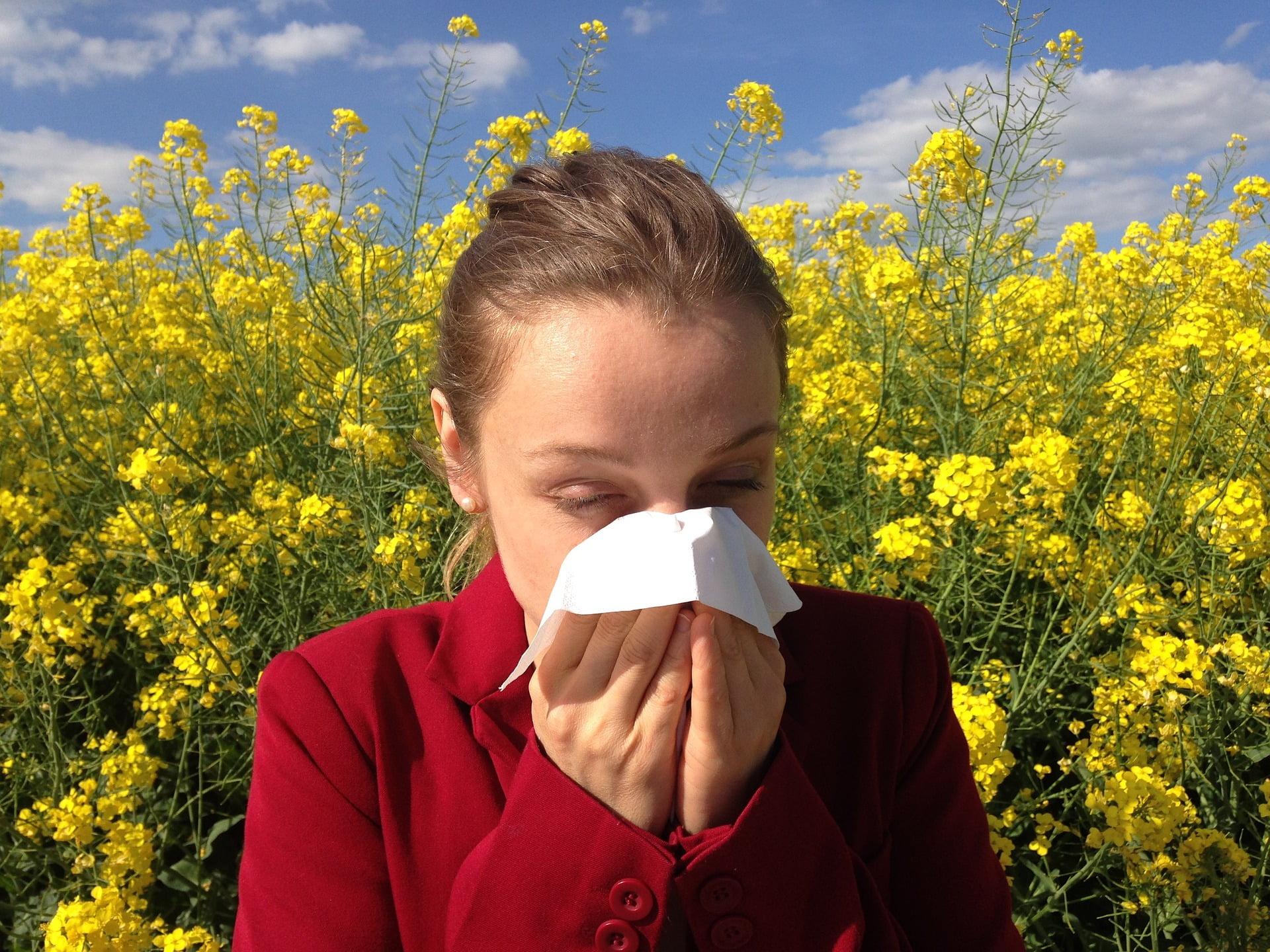 Din fericire, tratarea alergiilor sezoniere în mod natural este posibilă.