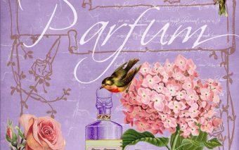 Alegerea parfumului potrivit. Decalogul pentru alegerea unui parfum