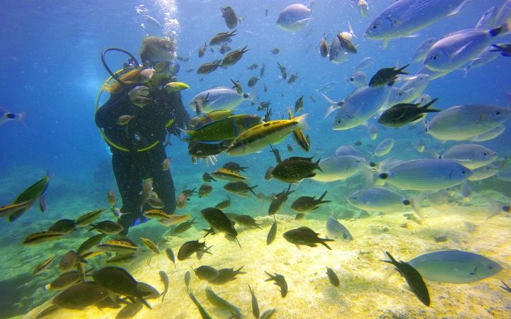 Laguna Inland Sea- Insula Gozo