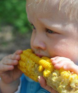 Pofta de mâncare la copii. Ce trebuie să știi și cum s-o înțelegi