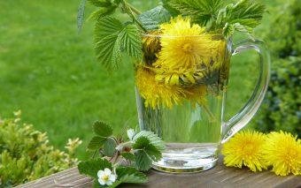 Ceaiuri pentru rinichi. Infuzii pentru purificarea rinichilor