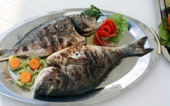 Peștele în sarcină. Permis sau nu?