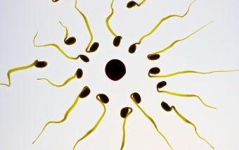 La cât timp după naștere apare ovulația. Care sunt semnele?