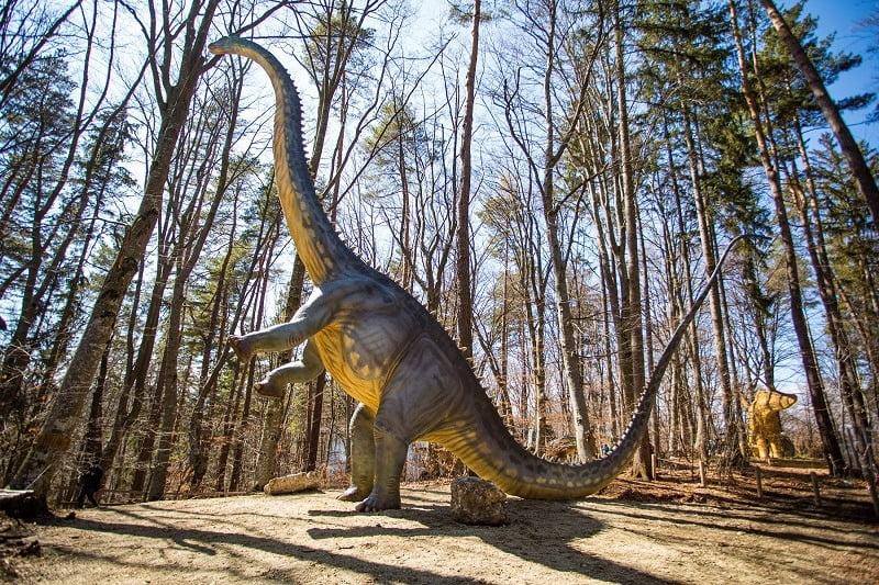 Cel mai înalt dinozaur, la Dino Parc Râșnov
