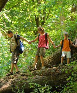 Ce tabere de vară alegi pentru copilul tău? Care e cea mai potrivită?