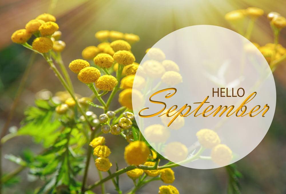 9 sfaturi pentru un început de septembrie bun