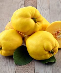 Uimitoarele beneficii ale gutuilor. Consumă și tu acest fruct!
